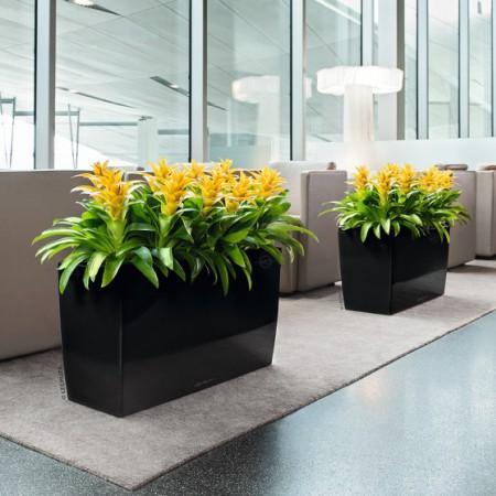 Ghiveci pentru flori Lechuza Cararo premium negru